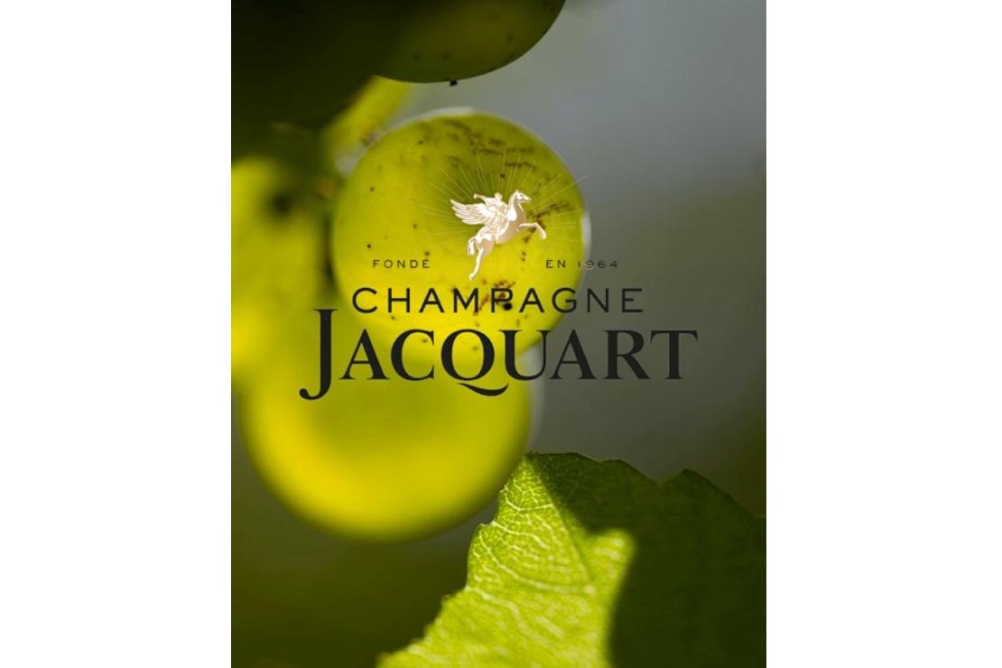 Champagne Jacquart: una degustazione a tutto tondo