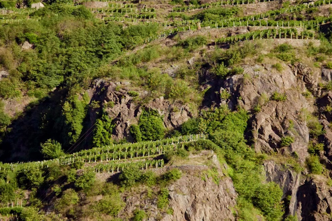Valtellina Superiore DOCG & Sforzato di Valtellina DOCG
