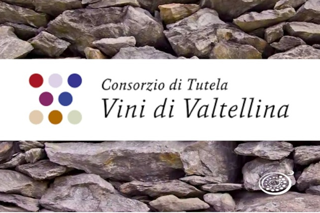 Valtellina: la valle, i vini, gli uomini e le donne di oggi che fanno la differenza