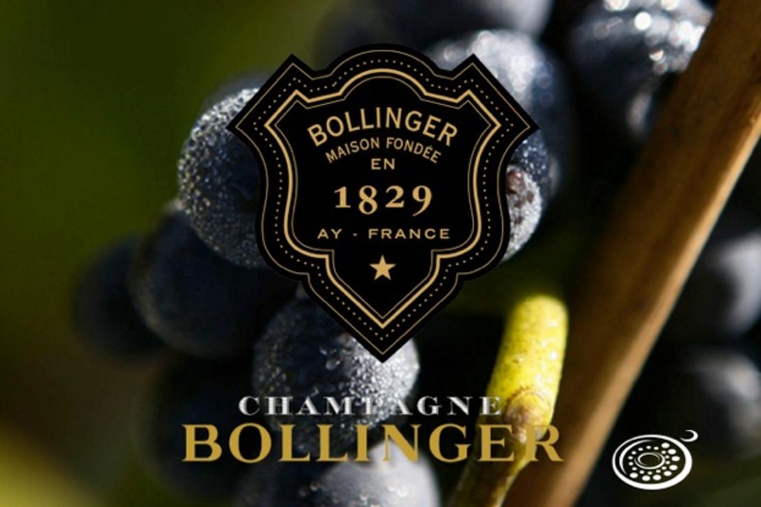 Tutto il savoir-faire Bollinger