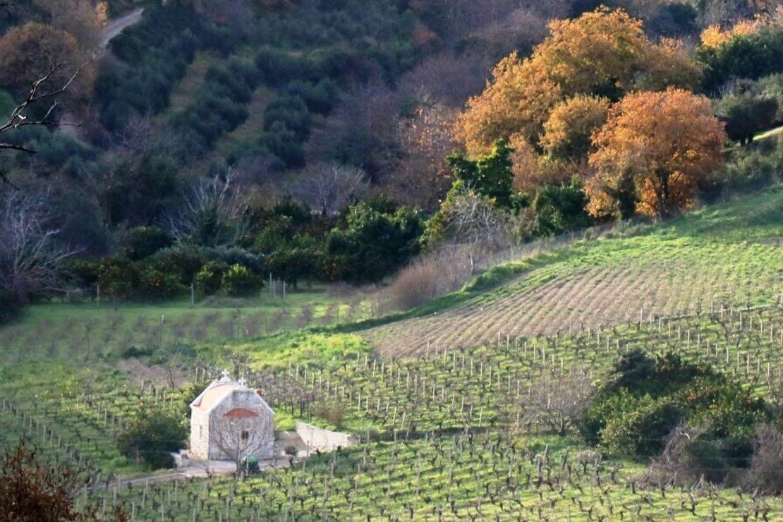 I vini di Creta, Cipro e Citera