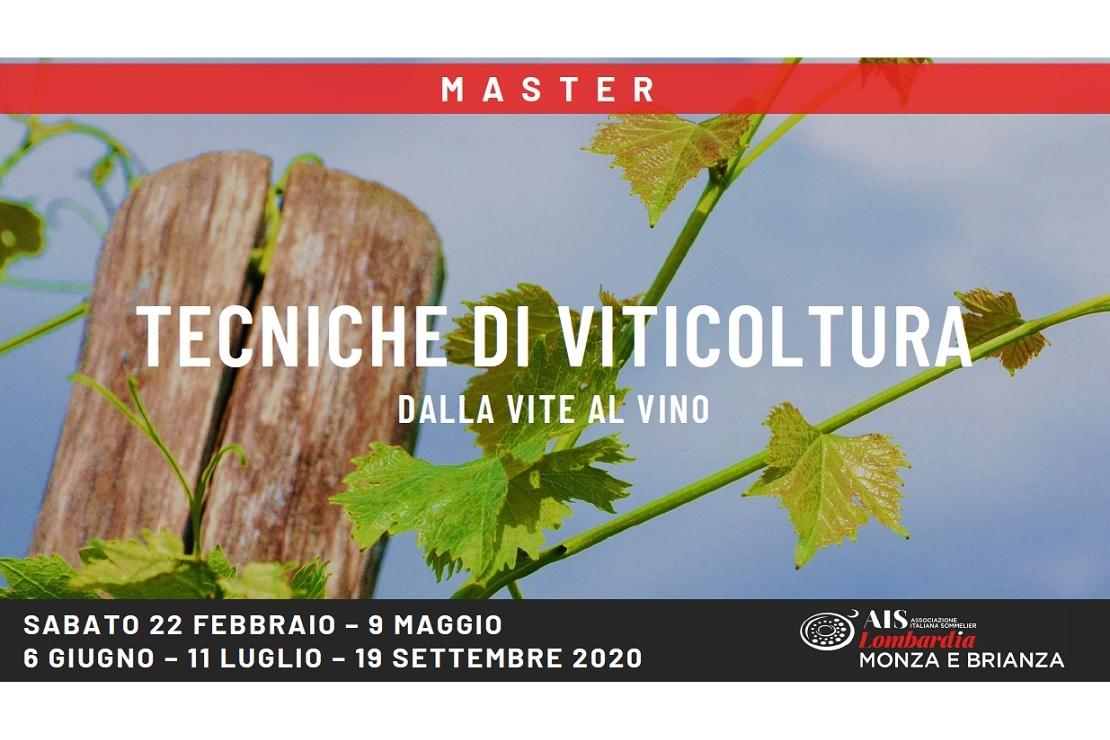 Master Tecniche di Viticoltura. Dalla vite al vino