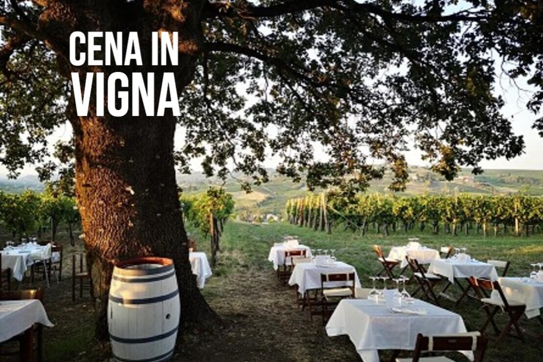 Cena in vigna | Azienda Agricola Calatroni
