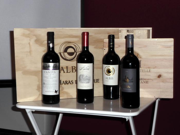 Antinori Ais Pavia - I vini in degustazione