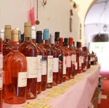 Italia In Rosa 2014