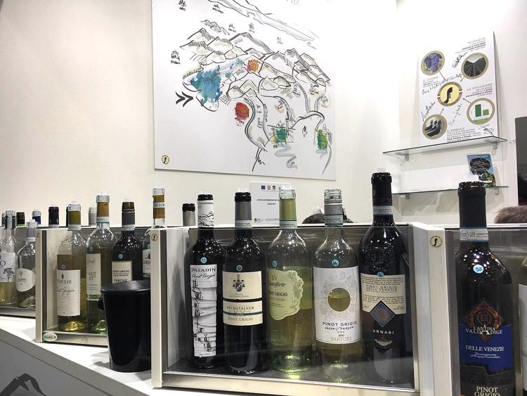 Pinot Grigio delle Venezie | Vinitaly 2018