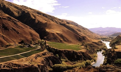 Pinot Noir Central Otago