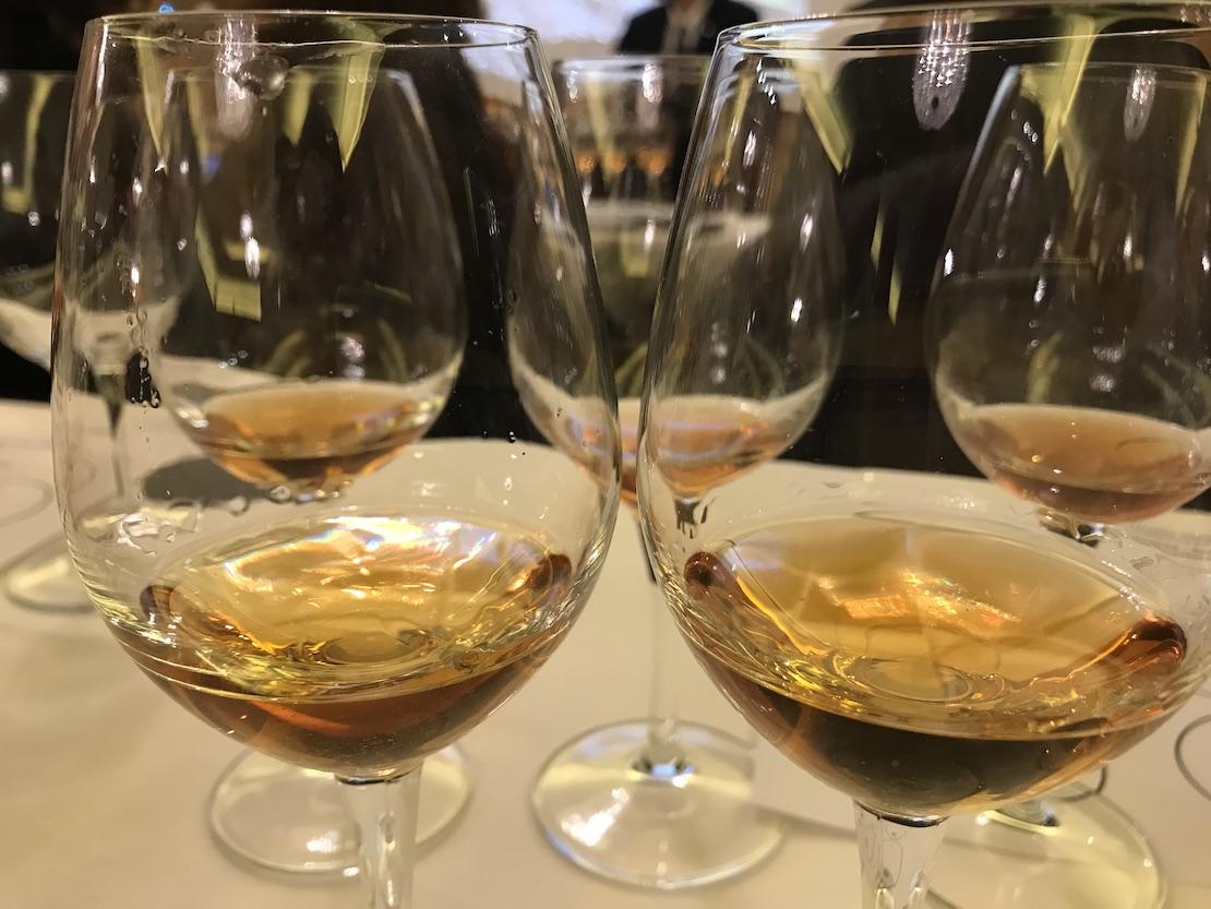 I vini di Josko Gravner